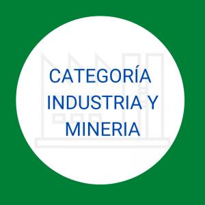 Industria y Minería